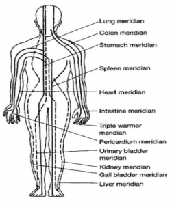 An illustration of the 12 primary meridians or energy pathways through the body